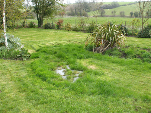 Myth No.4: My septic bed is always wet and the grass grows really well in that area. That's normal?