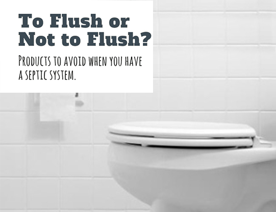 Myth No.5: We flush everything from baby wipes to feminine hygiene products. That shouldn't hurt anything; it's no different than toilet tissue
